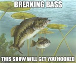 breaking bass 1